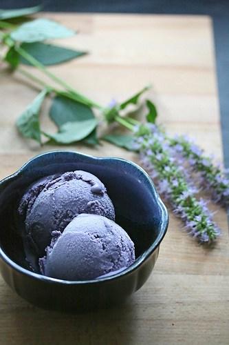 I Scream, You Scream… – Blueberry-Hyssop Ice Cream