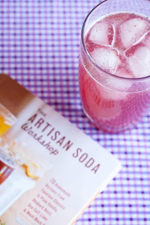Book Review: Plum Vanilla Syrup from The Artisan Soda Workshop