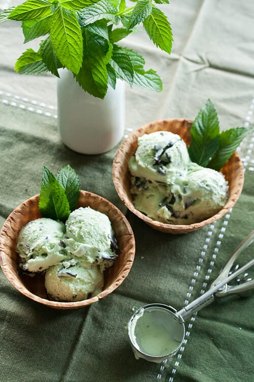 Minty Fresh: Chocolate Mint Chip Ice Cream